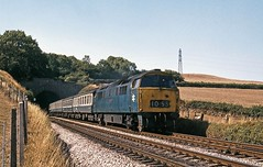 D1053, Dainton Tunnel, August 1976 (David Rostance) Tags: devon western dieselhydraulic class52 dainton d1053