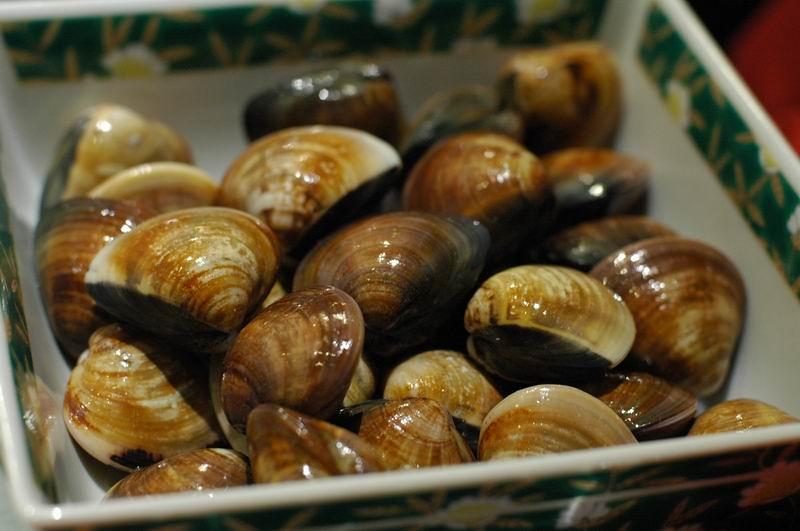 殼上的年輪是成長的印記,顏色則和魚塭的土質有關。圖片提供:張泰迪。