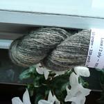 Svampfärgning Mushroom dyeing thumbnail