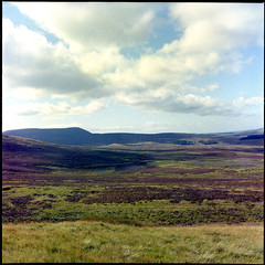 Moor (Kirk Packham) Tags: sky 120 clouds mediumformat outdoors heather hills heath kit moor barren pentlands yashicamat kodakportra400 scotlandscountryside canon8800f digibase