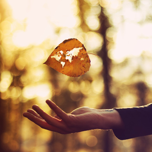 The Whole World, In His Hands