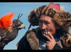 Kazakh eagle hunter and his golden eagle in the Altai Region of Bayan-Ölgii in Western Mongolia (jitenshaman) Tags: travel bird sport festival asian costume asia eagle mongolia raptor destination hunter tradition oriental orient kazakh steppe falconry mongolian aquilachrysaetos altai eaglehunter bayanulgii worldlocations bayanolgii bayanölgii
