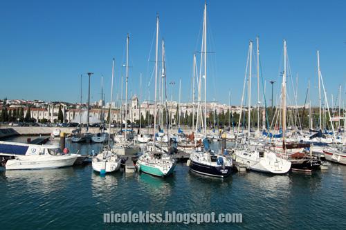 yachts bay