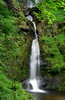 Pistyll Rhaeadr Waterfalls, near Llanrhaeadr-ym-Mochnant, Powys, Wales, UK | A spectacular and impressive waterfall surrounded by lush green vegetation (6 of 10) (ukgardenphotos) Tags: summer wales geotagged waterfall peace place screensaver restful calming peaceful waterfalls valley verdant serene f80 greenvalley pure picturesque hiddenvalley innerpeace tranquil attraction provia100f soothing prana powys cooling lifeforce purity secretplace midwales meditative rhaeadr peacefulplace pistyll enchantedplace secretwaterfall calendarshot pistyllrhaeadr naturesgarden vibrantgreen senseofpeace llanrhaeadrymmochnant lushgreen greenoasis geo:country=unitedkingdom naturalgem amazingwaterfalls welshwaterfall impressivewaterfalls ukgardenphotos geo:city=oswestry geo:lat=52855000 geo:lon=3378611 geo:zip=sy100bz bestwaterfalls