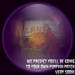 Crystal Ball about Going to the Pumpkin Patch (SaverTimeBlog) Tags: pumpkinpatch crystalball savertime