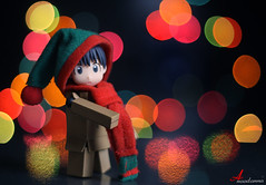 Winter is coming (ANOODONNA) Tags: life winter colors hat canon photography eos is still bokeh coming danbo 50d alrasheed alanood العنود danboard الرشيد anoodonna العنودالرشيد alanoodalrasheed دانبو دانبورد