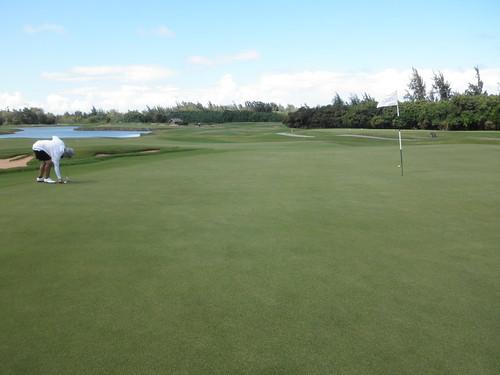 Turtle Bay Colf Course 263