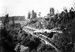 chasm-creek-train F166 1903