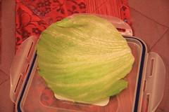 IMG_3908 (dropletsoftime) Tags: guadaloupe febrero2011