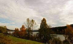 Schluchsee (Manuela Salzinger) Tags: autumn lake see day cloudy herbst schwarzwald blackforest schluchsee