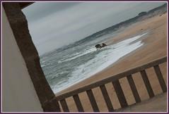 Pelcula (aquaviva1) Tags: praia portugal miramar graaquaresma