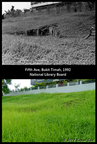 Bukit Timah, Fifth Ave Cemetery
