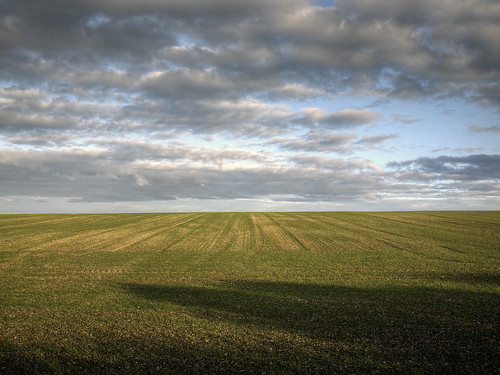 lincolnshire-wolds-field