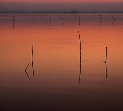 The evening light (da.geli) Tags: sunset italy lake umbria trasimeno doubleniceshot tripleniceshot mygearandme mygearandmepremium artistoftheyearlevel2