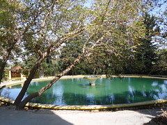 Art Deco fountain (pefkosmad3millionviewsthanks!) Tags: fish fountain italian hellas greece artdeco greekislands griechenland rhodes rare dodecanese eleousa rodhos giz