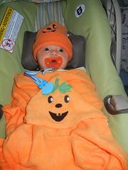 Pumpkin Leo