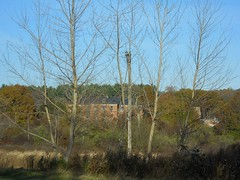 Mansfield Training School 2.4kV - Mansfield, CT (The Power Line Page) Tags: 2400v