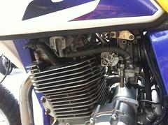 IMG_1563 (Adesivare) Tags: motoca