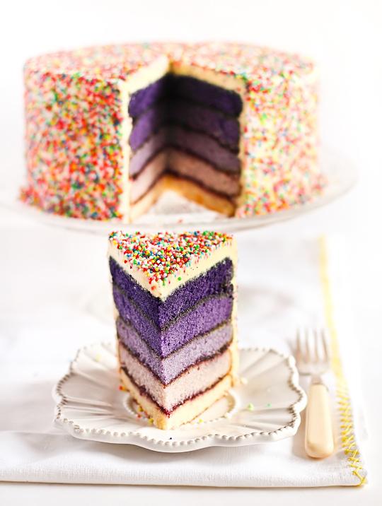 Purple Ombre Sprinkles Cake