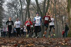 Svátek přinese běhy 17. listopadu, víkend krosy i závody na dráze
