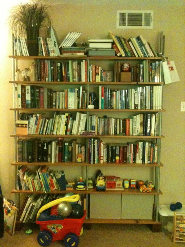 wall size bookcase full of books