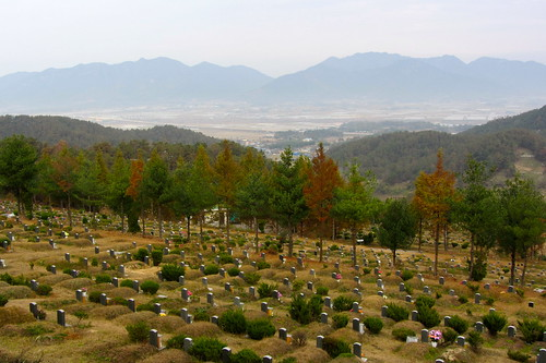 graveyard11