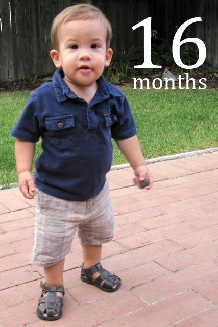 sixteen months