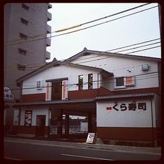 ああ!今出川浄福寺にくら寿司できてるやん!!w