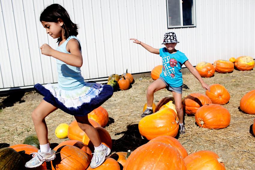 100811 018a pumpkin festival ak