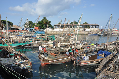 Dhow port: Stone Town