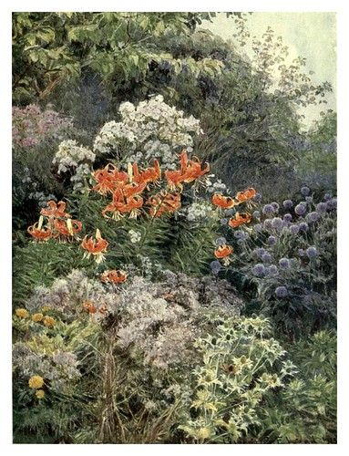 004-El encanto silvestre del otoño-The garden that I love-1906-George S. Elgood