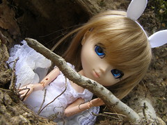 Wendy - Follow me ... (The Baby Face) Tags: eyes eau dream pullip latte lapin customiser terriere
