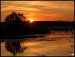 Sunset (Suzanham) Tags: sunset water evening noxubeerefuge fantasticnature absolutelyperrrfect