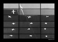 Vida y muerte (chapiniki) Tags: life blancoynegro lines death blackwhite squares muerte vida conceptual