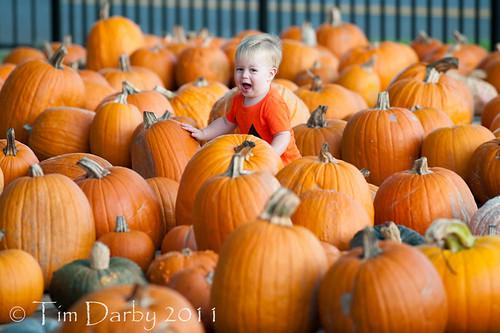 2011-10-19 - Pumpkin Patch-398