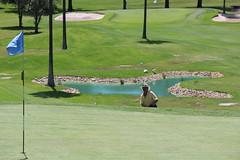 IMG_3338 (bobmendo) Tags: golf sydney nsw monavale svga bayviewgolfclub