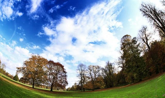 IMAGE: http://farm7.static.flickr.com/6095/6305625545_3f45610eff_z.jpg