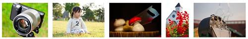 Sony E 50mm f/1.8 OSS plus Sony NEX-5N -- Full-resolution test photo samples