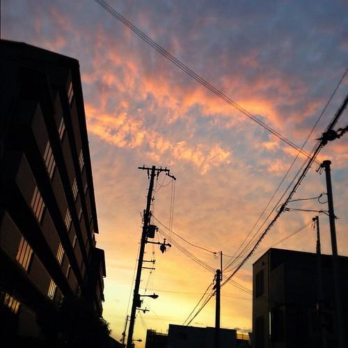 今日の写真 No.425 – 昨日Instagramへ投稿した写真(1枚)/iPhone4S、Snapseed、Big Lens