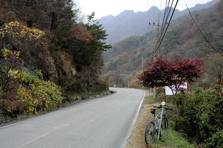 Rd in Gyeryongsan Mt