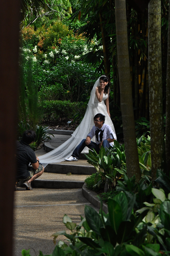 A pair of Newly Weds 一对新人 ...