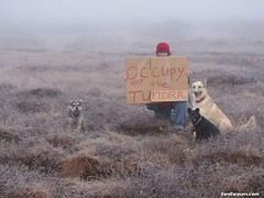 Occupy the Tundra (sanitaryum) Tags: funny lol humor cleanhumor