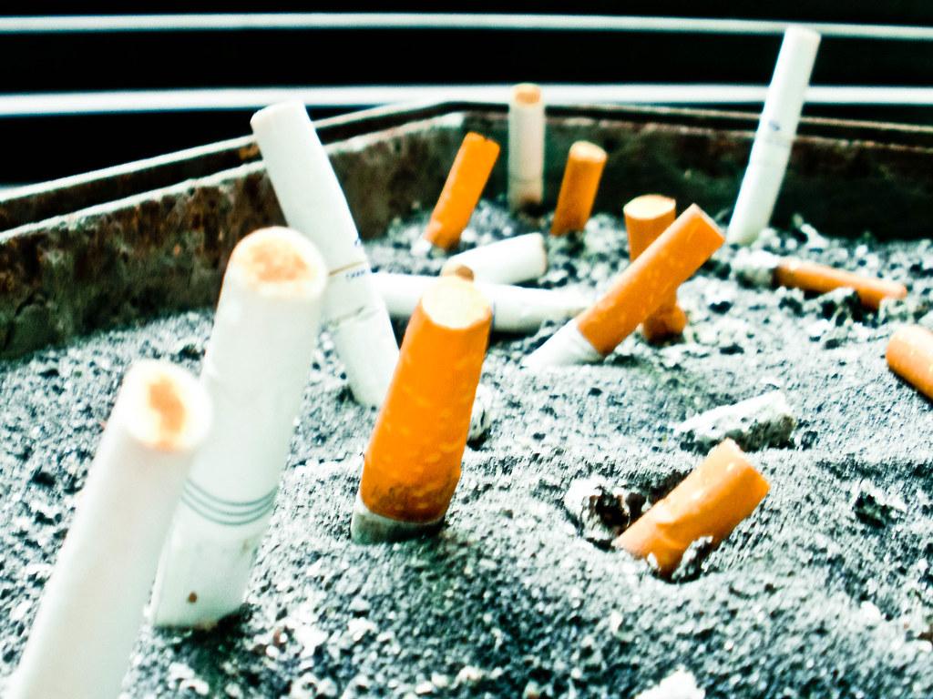 Cigarette Graveyard 烟墓 ...
