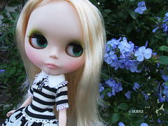 Taking photos of Blythe 2