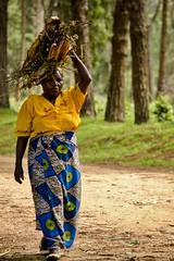 Wood (Jack Zalium) Tags: africa wood woman mainstreet malawi northernregion livingstonia womancarryingwood nellumazilu
