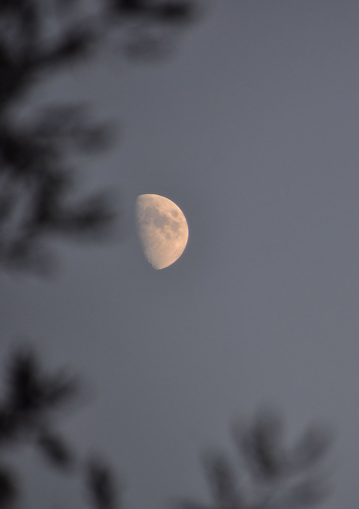 SGM.Dame lune.2.19h29 le 05.10.11