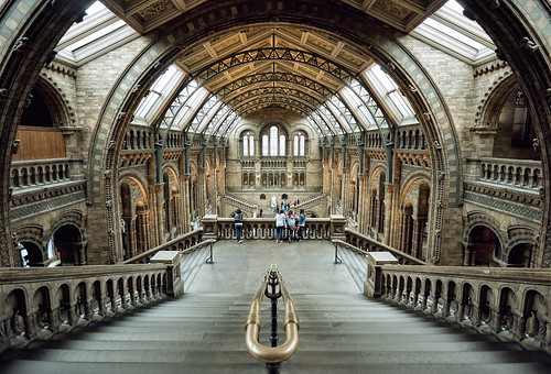 Natural History Museum London - mx2-foto