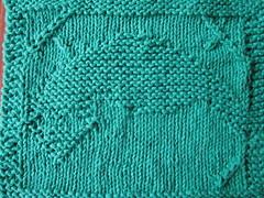 trans warp (ST:VOY) dishcloth