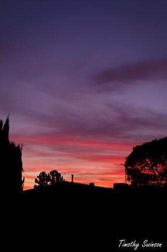 sunset 24-10-11 portrait
