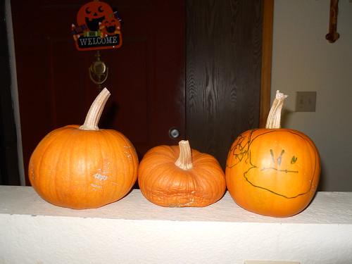 OurPumpkins